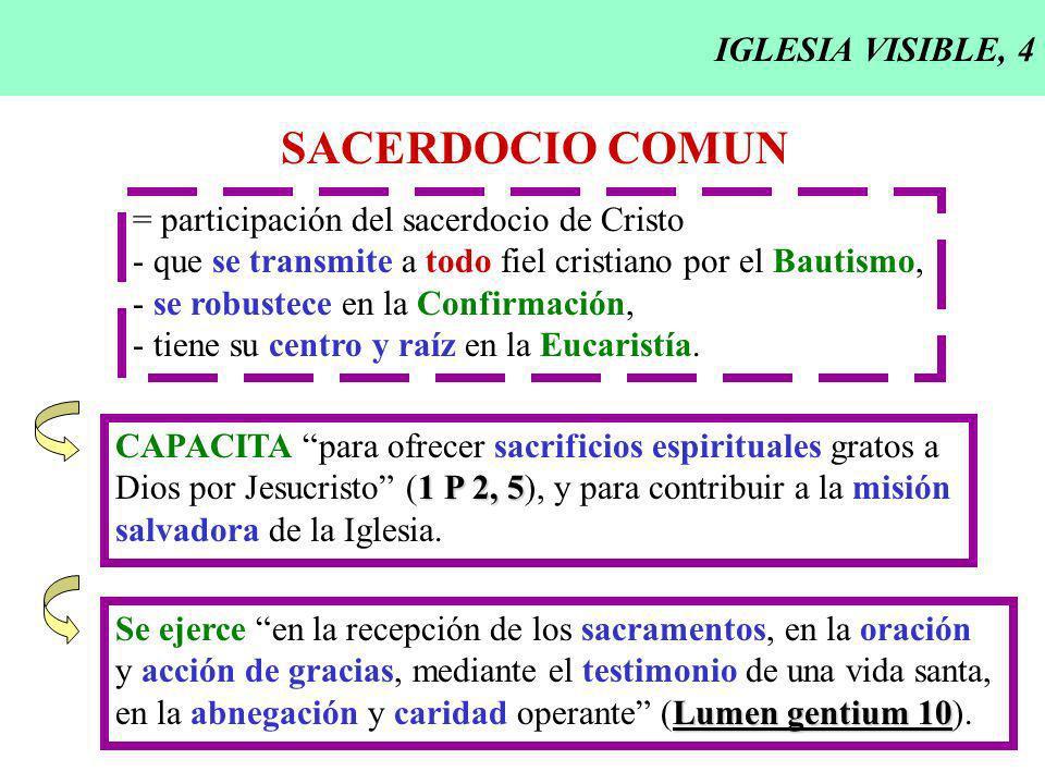 IGLESIA VISIBLE, 4 SACERDOCIO COMUN = participación del sacerdocio de Cristo - que se transmite a todo fiel cristiano por el Bautismo, - se robustece