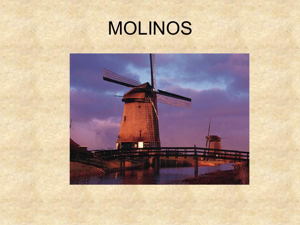 MOLINOS En Países Bajos se pueden encontrar más de 9.000 molinos de viento, muchos de ellos, construidos en el siglo XIX.