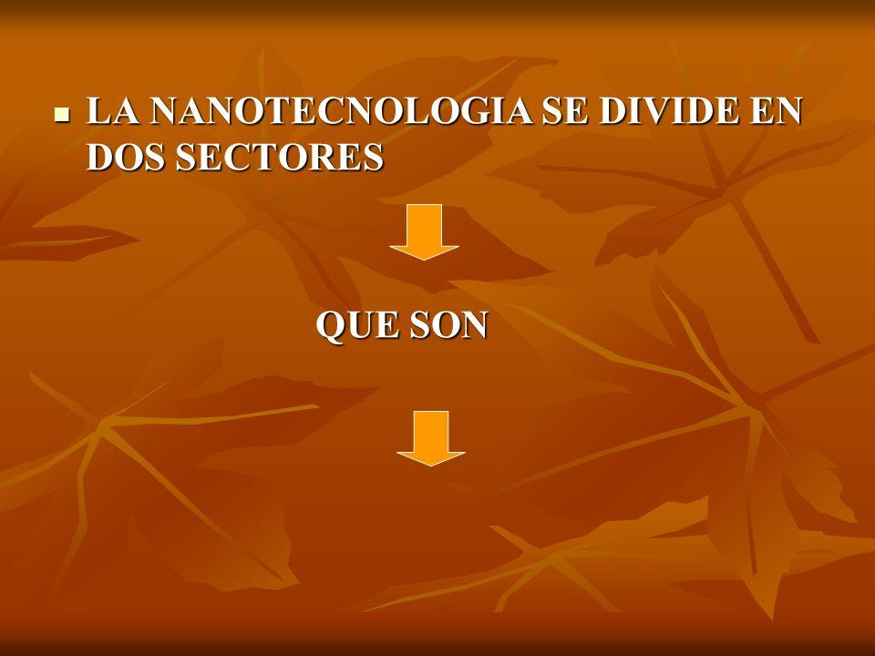 LA NANOTECNOLOGIA SE DIVIDE EN DOS SECTORES LA NANOTECNOLOGIA SE DIVIDE EN DOS SECTORES QUE SON QUE SON