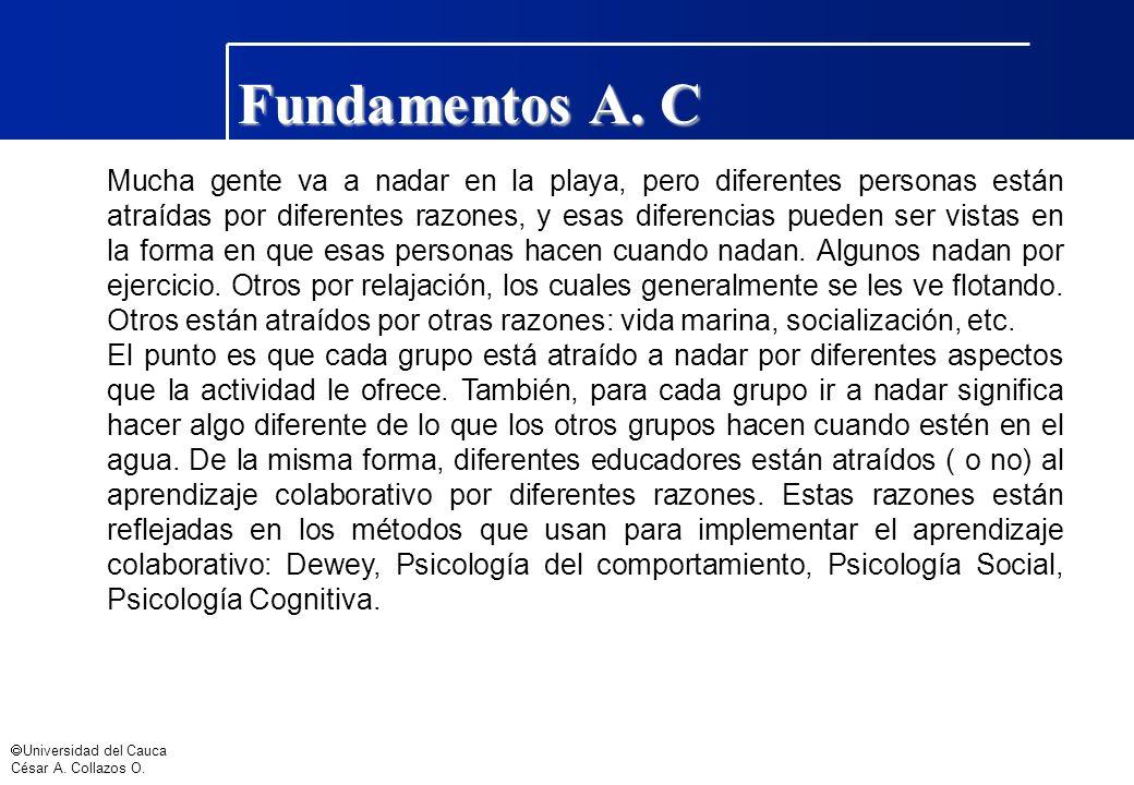 Universidad del Cauca César A. Collazos O. Fundamentos A. C Mucha gente va a nadar en la playa, pero diferentes personas están atraídas por diferentes