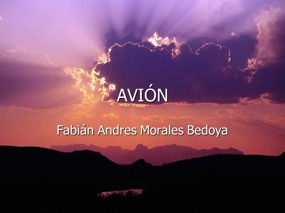 AVIÓN Fabián Andres Morales Bedoya