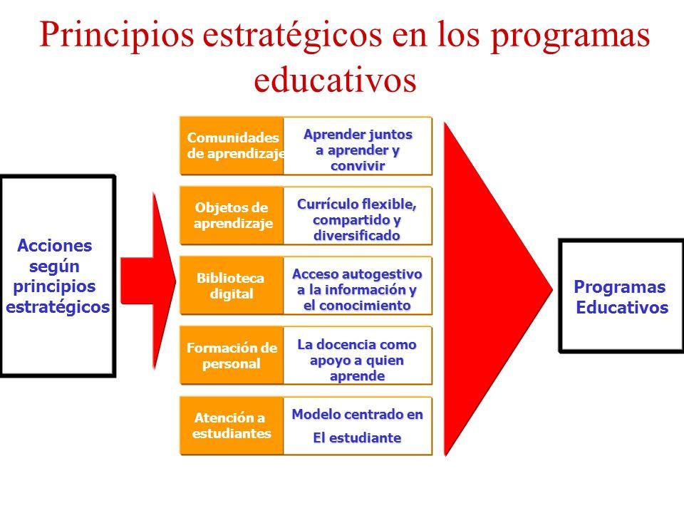 Principios estratégicos en los programas educativos Acciones según principios estratégicos Comunidades de aprendizaje Objetos de aprendizaje Bibliotec