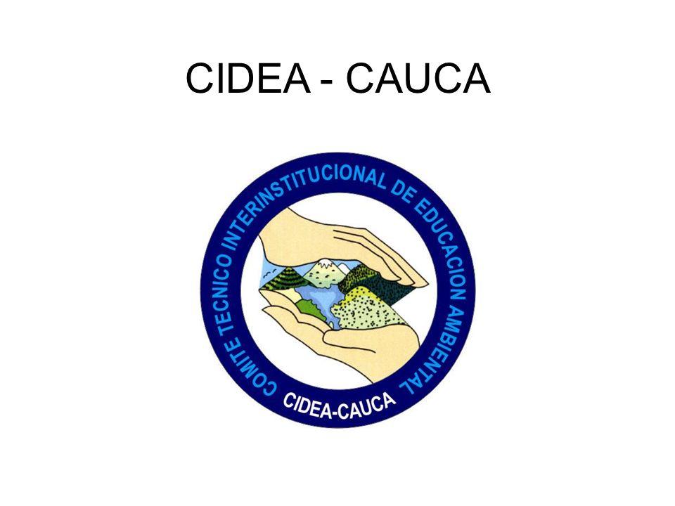 CIDEA - CAUCA
