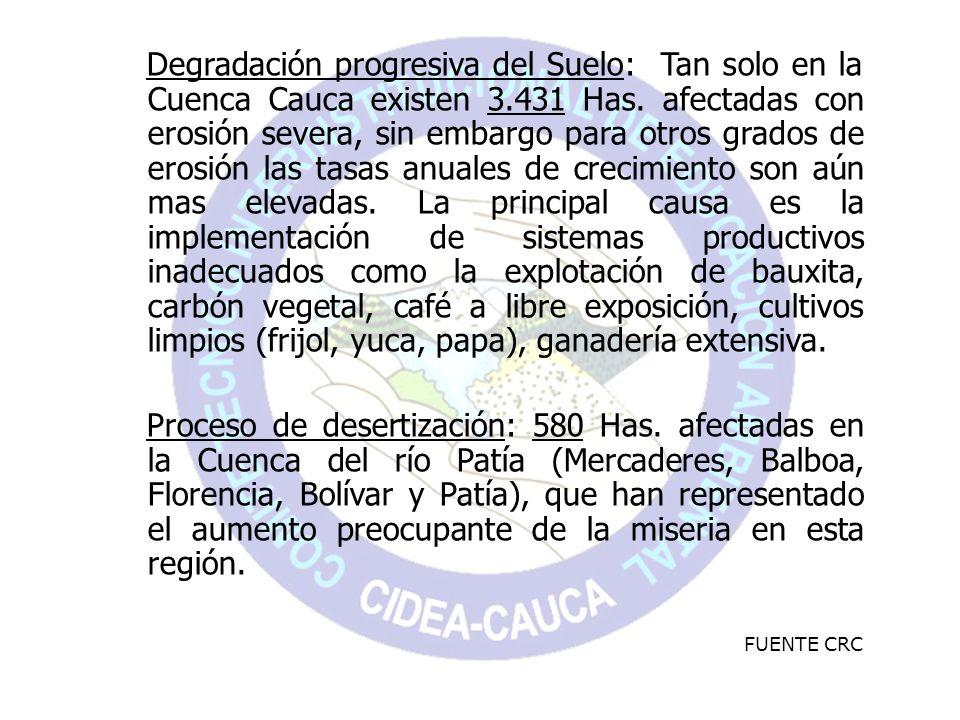 Degradación progresiva del Suelo: Tan solo en la Cuenca Cauca existen 3.431 Has. afectadas con erosión severa, sin embargo para otros grados de erosió