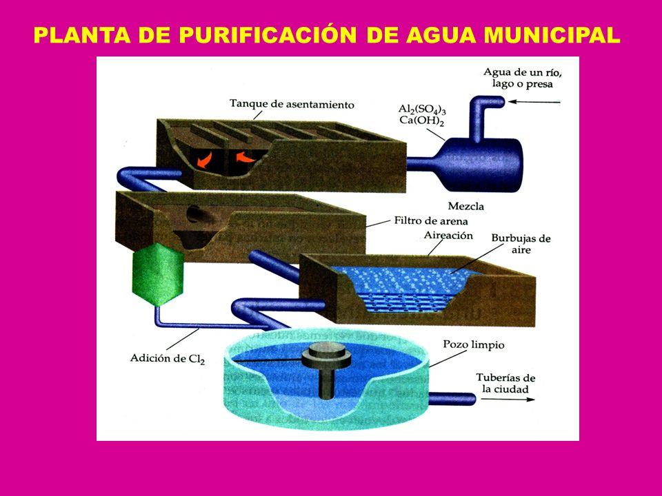 PLANTA DE PURIFICACIÓN DE AGUA MUNICIPAL