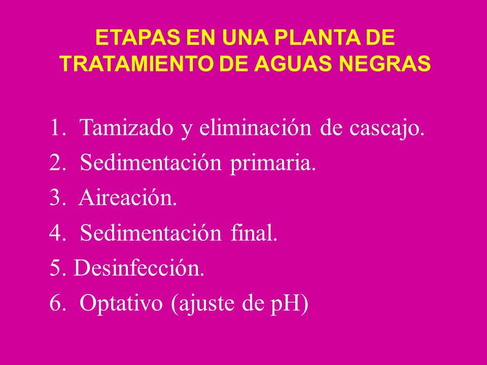 ETAPAS EN UNA PLANTA DE TRATAMIENTO DE AGUAS NEGRAS 1. Tamizado y eliminación de cascajo. 2. Sedimentación primaria. 3. Aireación. 4. Sedimentación fi