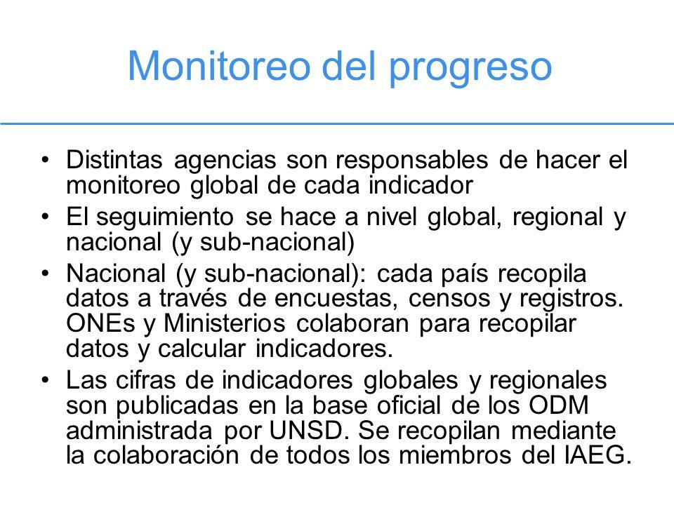 Distintas agencias son responsables de hacer el monitoreo global de cada indicador El seguimiento se hace a nivel global, regional y nacional (y sub-n