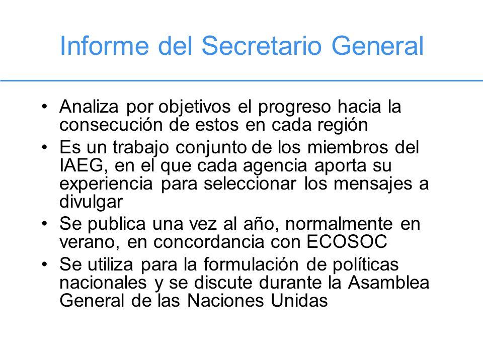Informe del Secretario General Analiza por objetivos el progreso hacia la consecución de estos en cada región Es un trabajo conjunto de los miembros d