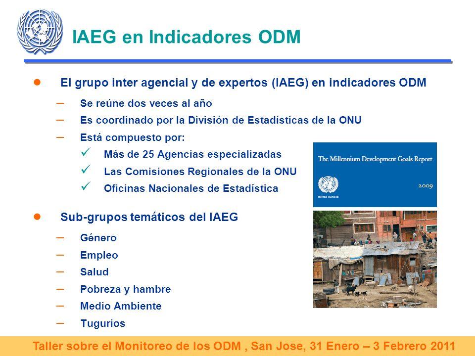 Taller sobre el Monitoreo de los ODM, San Jose, 31 Enero – 3 Febrero 2011 El IAEG y el seguimiento de los ODM IAEG se encarga de: Recopilar datos y analizarlos para hacer un seguimiento de los ODM a nivel mundial y regional Informar sobre el progreso anual registrado a través de publicaciones, tablas de progreso, bases de datos, etc.