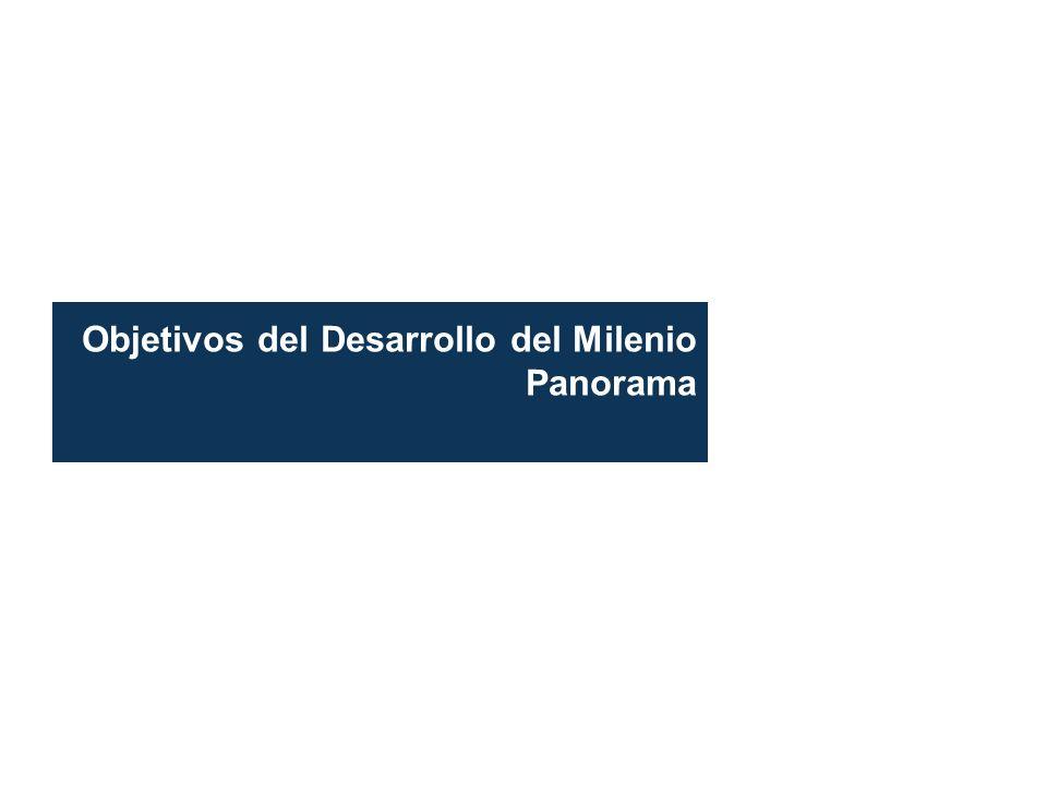 Objetivos del Desarrollo del Milenio Panorama