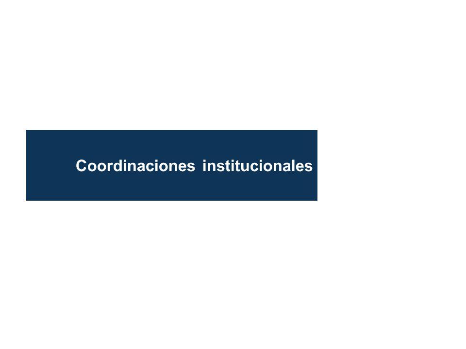 Coordinaciones institucionales