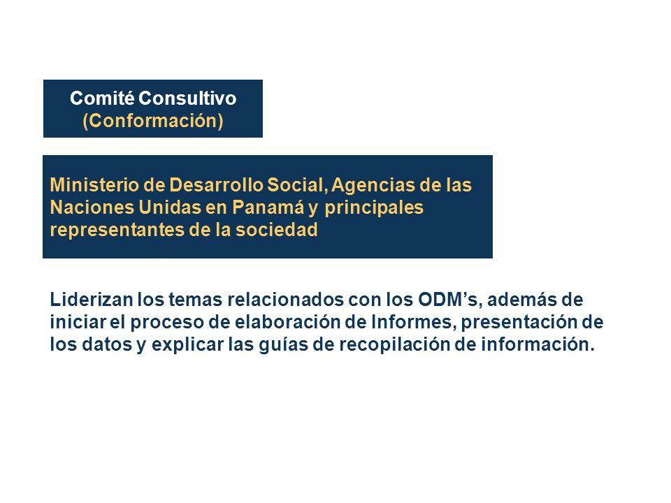 Ministerio de Desarrollo Social, Agencias de las Naciones Unidas en Panamá y principales representantes de la sociedad Liderizan los temas relacionados con los ODMs, además de iniciar el proceso de elaboración de Informes, presentación de los datos y explicar las guías de recopilación de información.