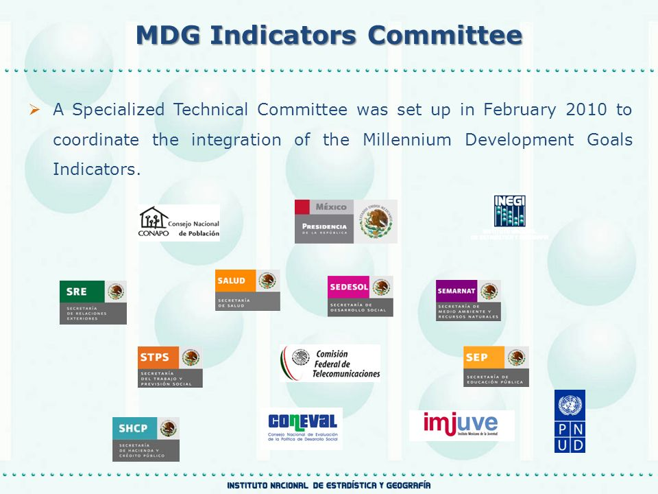 MDG Indicators Committee A Specialized Technical Committee was set up in February 2010 to coordinate the integration of the Millennium Development Goals Indicators.