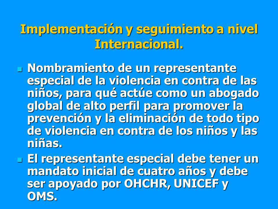 Implementación y seguimiento a nivel Internacional.
