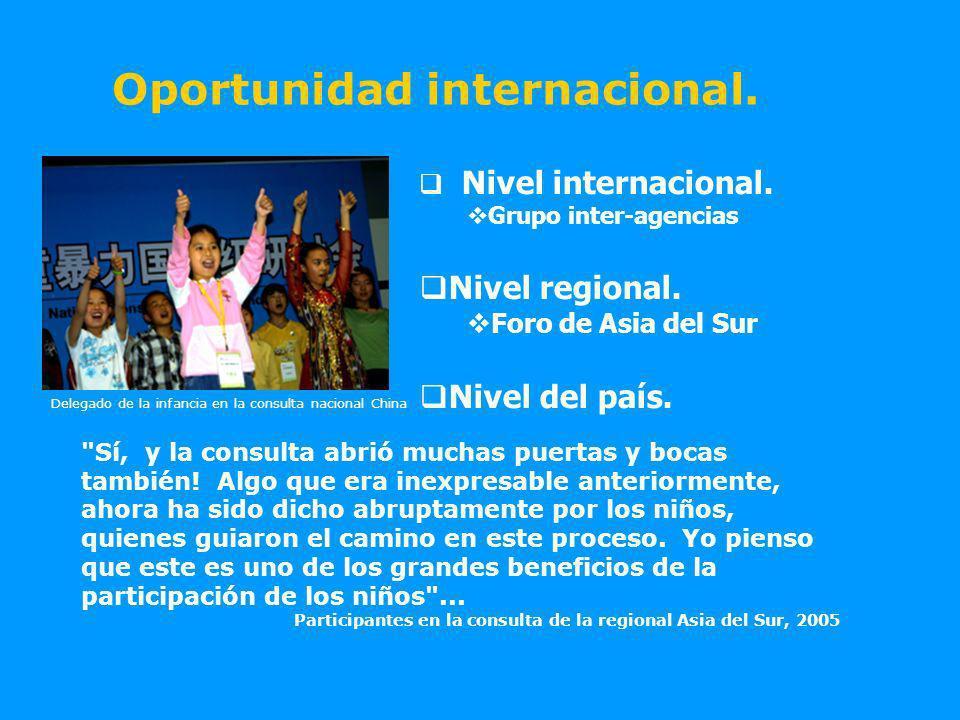 Delegado de la infancia en la consulta nacional China Oportunidad internacional.