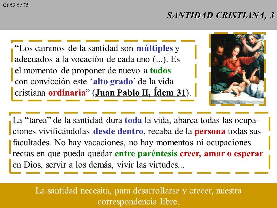 SANTIDAD CRISTIANA, 3 Los caminos de la santidad son múltiples y adecuados a la vocación de cada uno (...).