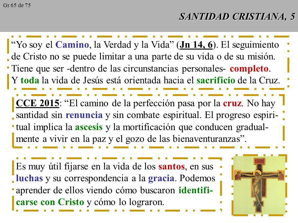 SANTIDAD CRISTIANA, 5 Yo soy el Camino, la Verdad y la Vida (Jn 14, 6).