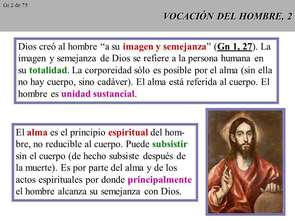 VOCACIÓN DEL HOMBRE, 1 CCE 1: Dios, infinitamente perfecto y bienaventurado en sí mismo, en un designio de pura bondad, ha creado libremente al hombre