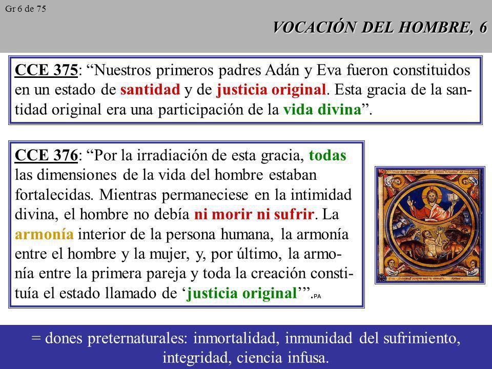 VOCACIÓN DEL HOMBRE, 5 Conocer, amar, darse libremente a Dios y al servicio de los demás es la vocación de toda persona. Pero el desarrollo de la vida