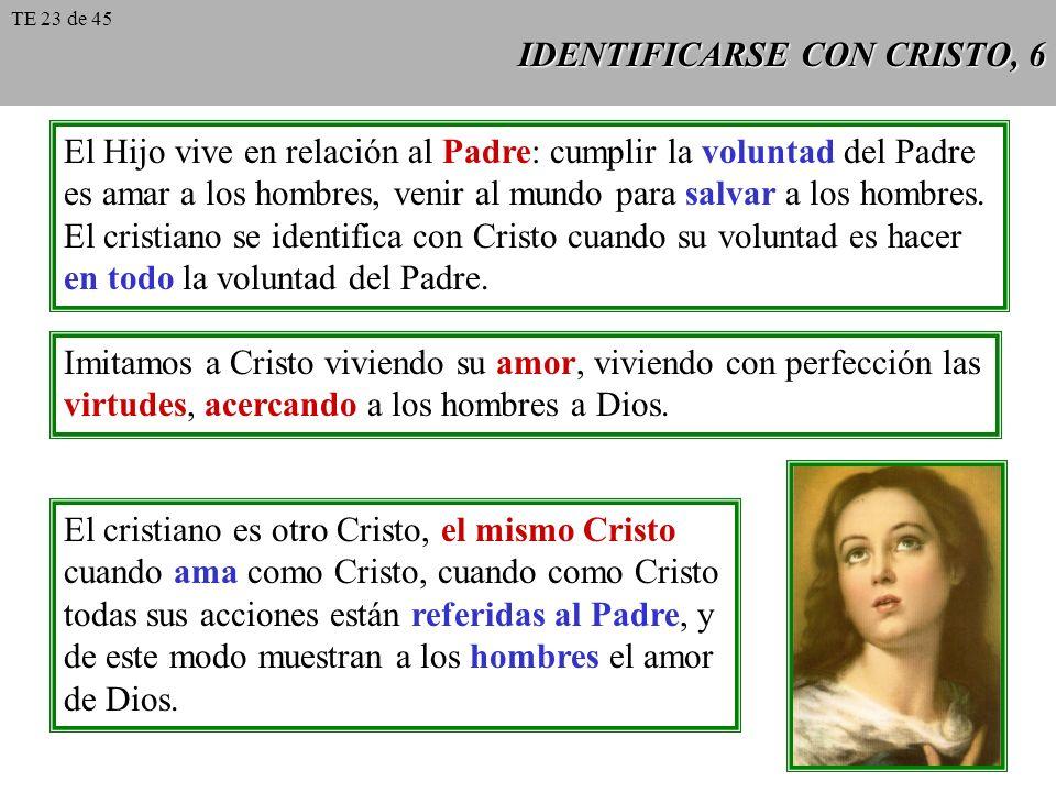 IDENTIFICARSE CON CRISTO, 6 El Hijo vive en relación al Padre: cumplir la voluntad del Padre es amar a los hombres, venir al mundo para salvar a los h