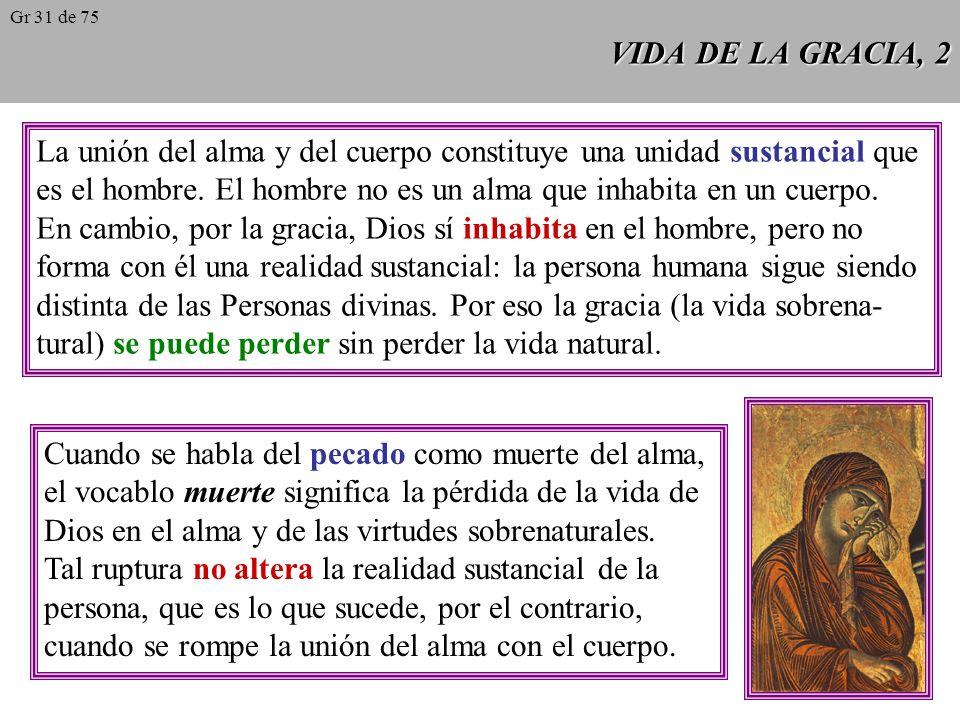 VIDA DE LA GRACIA, 2 La unión del alma y del cuerpo constituye una unidad sustancial que es el hombre.