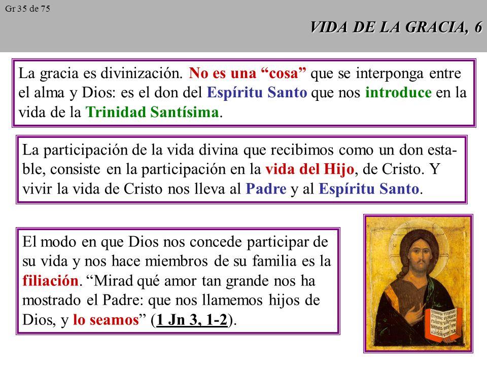 VIDA DE LA GRACIA, 6 La gracia es divinización.