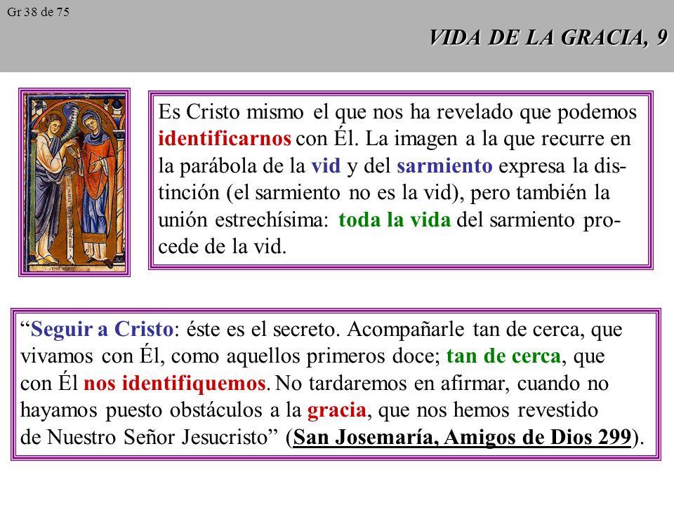 VIDA DE LA GRACIA, 9 Es Cristo mismo el que nos ha revelado que podemos identificarnos con Él.