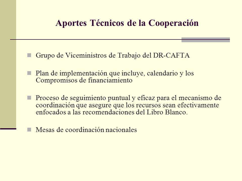 Aportes Técnicos de la Cooperación Grupo de Viceministros de Trabajo del DR-CAFTA Plan de implementación que incluye, calendario y los Compromisos de financiamiento Proceso de seguimiento puntual y eficaz para el mecanismo de coordinación que asegure que los recursos sean efectivamente enfocados a las recomendaciones del Libro Blanco.