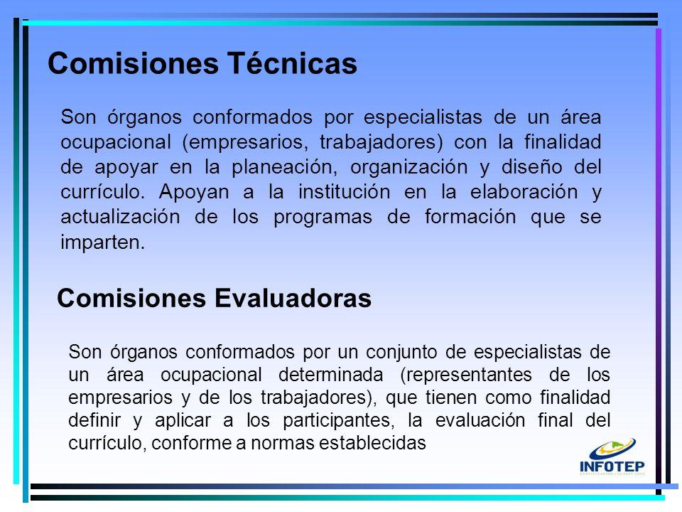 12 Son órganos conformados por especialistas de un área ocupacional (empresarios, trabajadores) con la finalidad de apoyar en la planeación, organización y diseño del currículo.