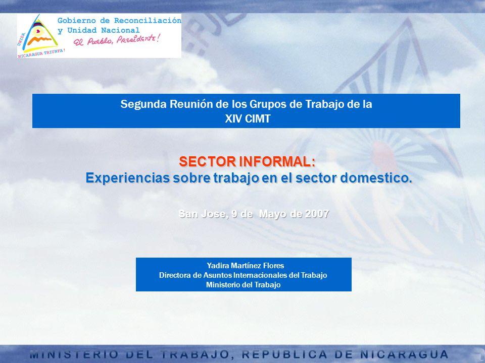 SECTOR INFORMAL: Experiencias sobre trabajo en el sector domestico. Experiencias sobre trabajo en el sector domestico. Yadira Martínez Flores Director
