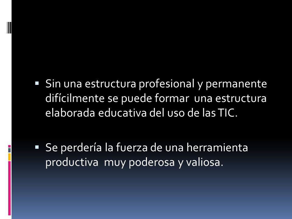 Sin una estructura profesional y permanente difícilmente se puede formar una estructura elaborada educativa del uso de las TIC.