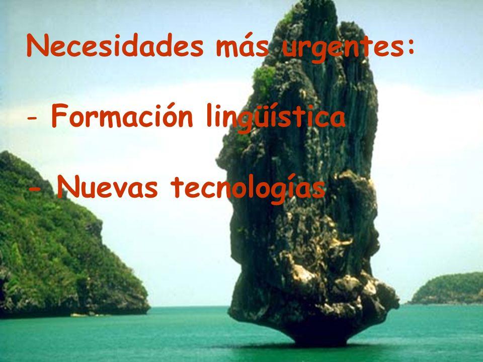 Necesidades más urgentes: - Formación lingüística - Nuevas tecnologías
