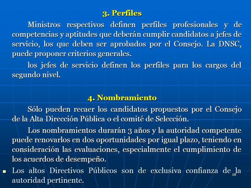 18 3. Perfiles Ministros respectivos definen perfiles profesionales y de competencias y aptitudes que deberán cumplir candidatos a jefes de servicio,