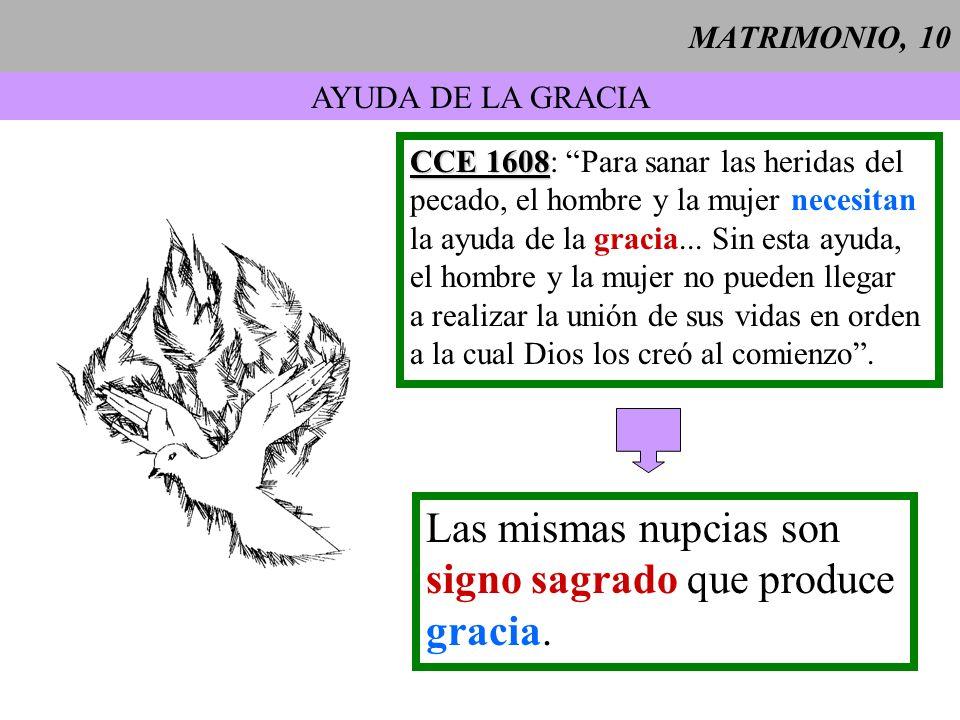 MATRIMONIO, 11 La alianza matrimonial...