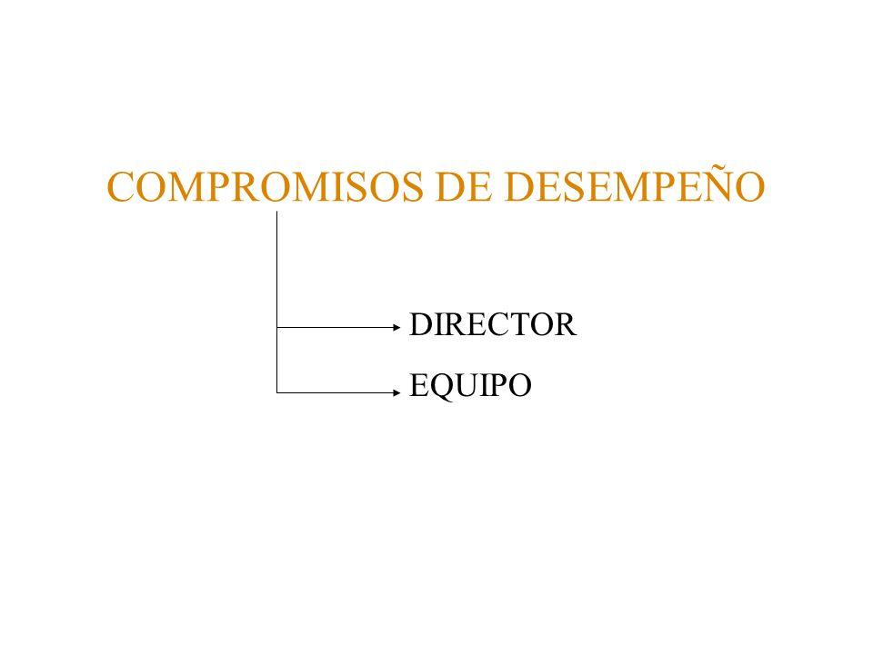 COMPROMISOS DE DESEMPEÑO DIRECTOR EQUIPO