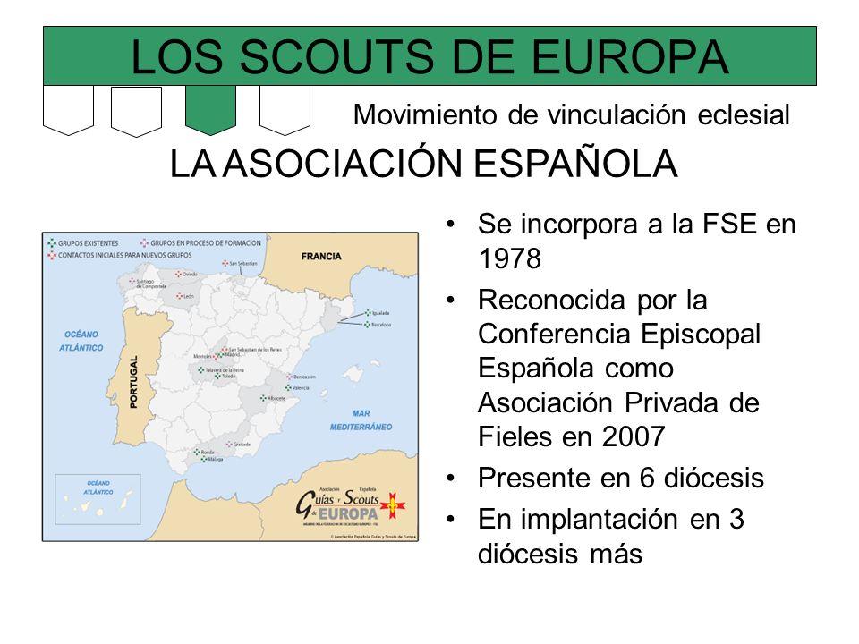 LOS SCOUTS DE EUROPA LA ASOCIACIÓN ESPAÑOLA Se incorpora a la FSE en 1978 Reconocida por la Conferencia Episcopal Española como Asociación Privada de