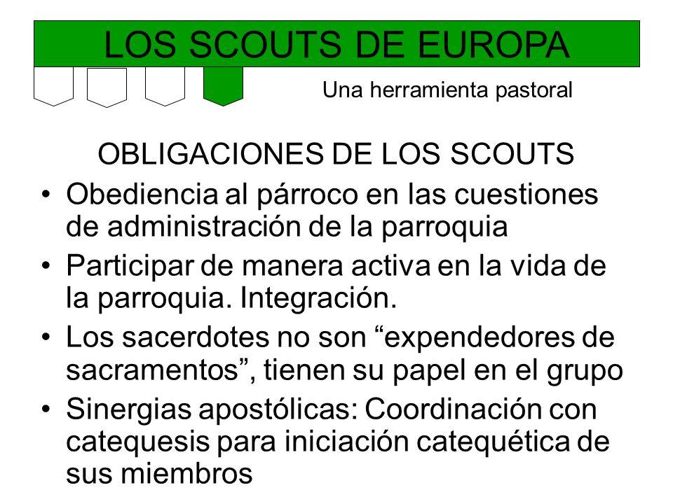 LOS SCOUTS DE EUROPA OBLIGACIONES DE LOS SCOUTS Obediencia al párroco en las cuestiones de administración de la parroquia Participar de manera activa