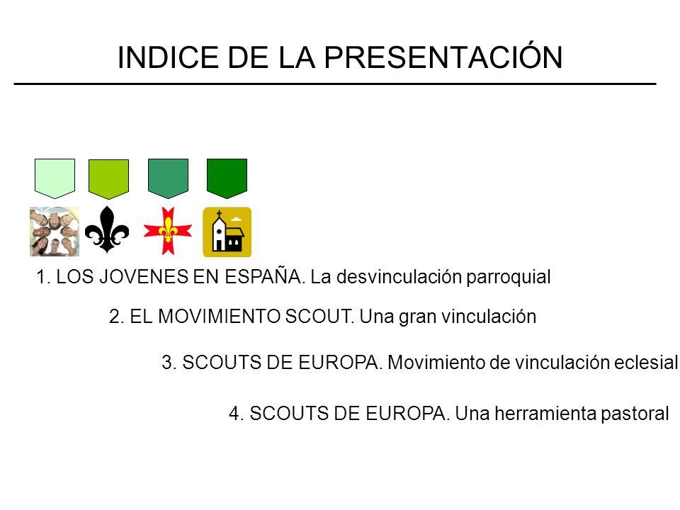 LOS JÓVENES EN ESPAÑA Informe Grupo metadigma para Libro de Vida Internacional.
