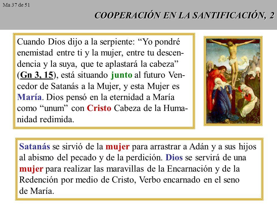 COOPERACIÓN EN LA SANTIFICACIÓN, 2 Cuando Dios dijo a la serpiente: Yo pondré enemistad entre ti y la mujer, entre tu descen- dencia y la suya, que te aplastará la cabeza (Gn 3, 15), está situando junto al futuro Ven- cedor de Satanás a la Mujer, y esta Mujer es María.