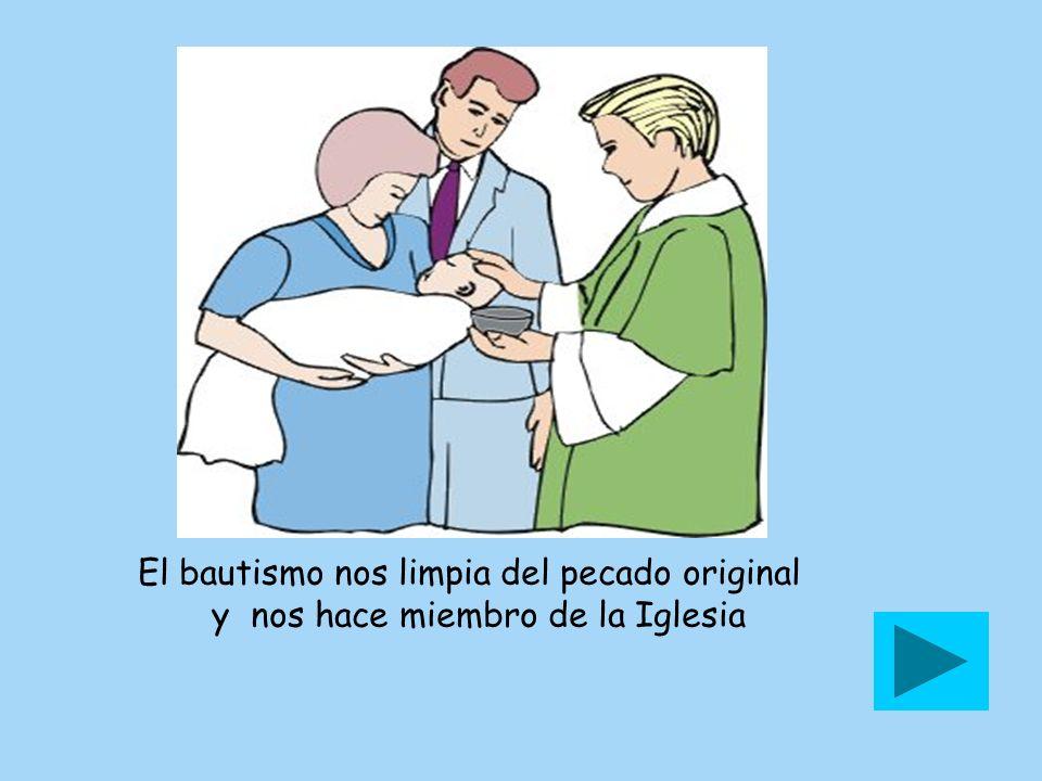 El bautismo nos limpia del pecado original y nos hace miembro de la Iglesia