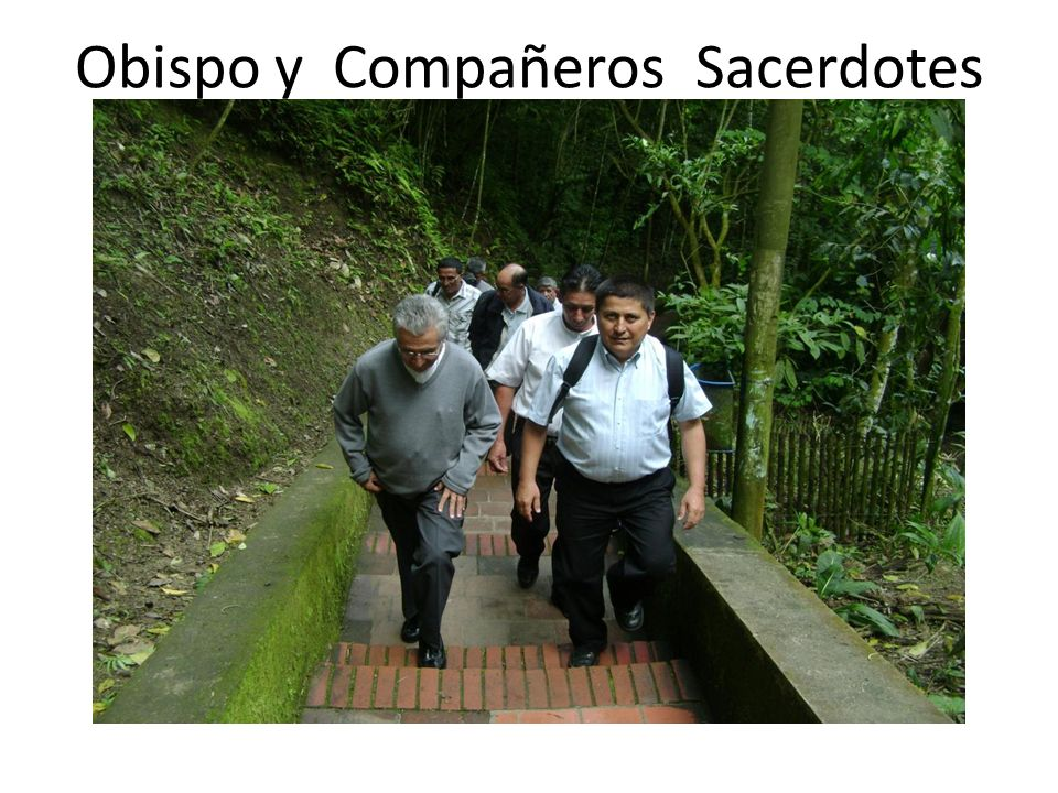 Obispo y Compañeros Sacerdotes