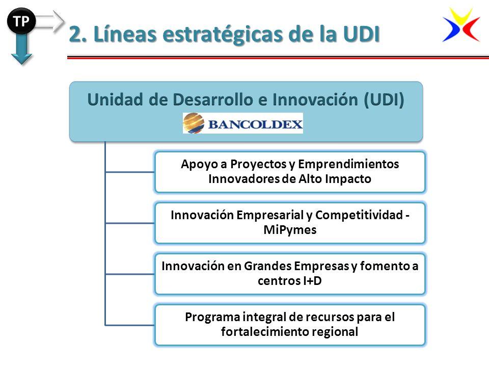 2. Líneas estratégicas de la UDI TP