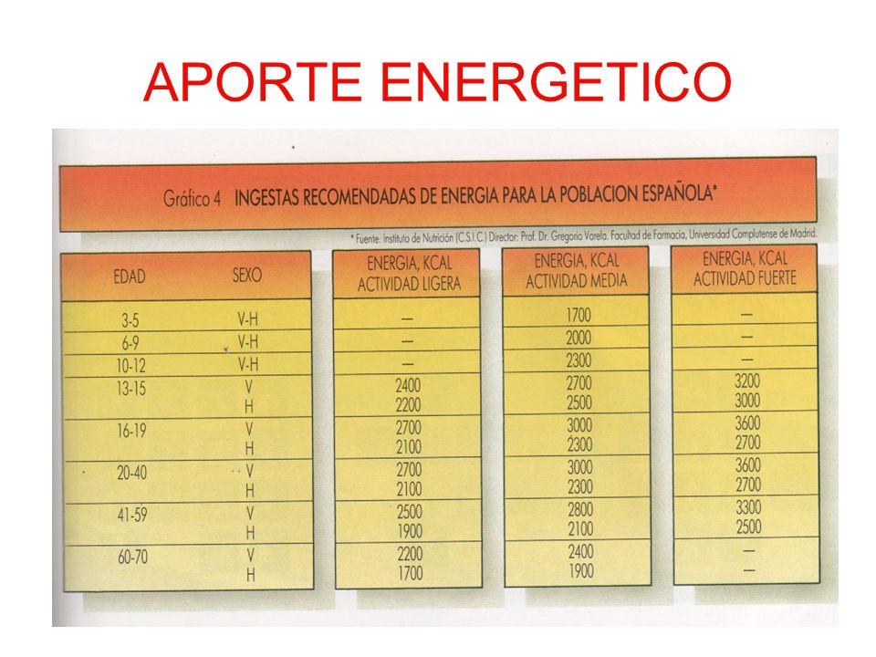 APORTE ENERGETICO