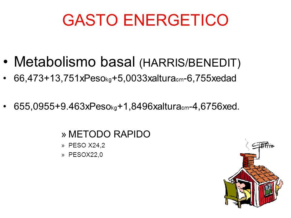 GASTO ENERGETICO Metabolismo basal (HARRIS/BENEDIT) 66,473+13,751xPeso kg +5,0033xaltura cm -6,755xedad 655,0955+9.463xPeso kg +1,8496xaltura cm -4,67