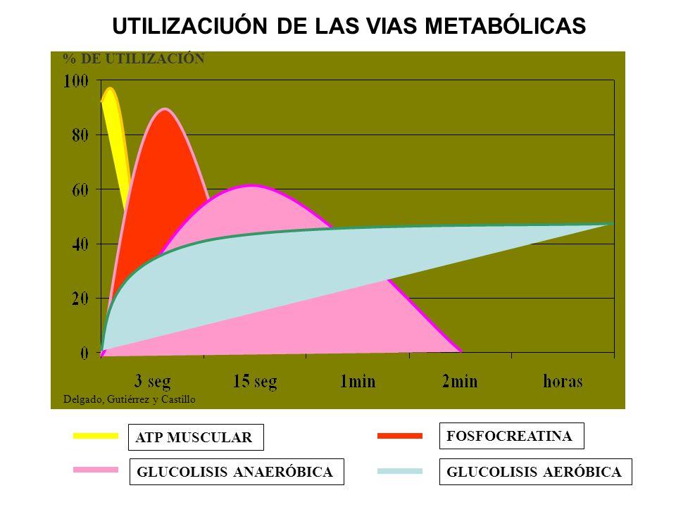 UTILIZACIUÓN DE LAS VIAS METABÓLICAS ATP MUSCULAR FOSFOCREATINA GLUCOLISIS ANAERÓBICAGLUCOLISIS AERÓBICA % DE UTILIZACIÓN Delgado, Gutiérrez y Castill