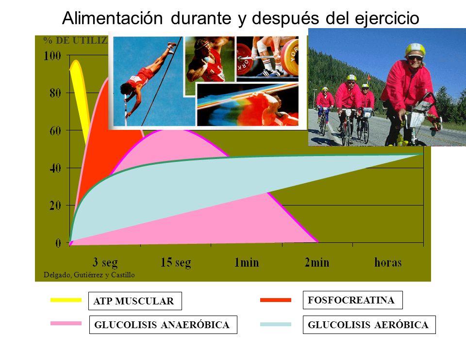 Alimentación durante y después del ejercicio ATP MUSCULAR FOSFOCREATINA GLUCOLISIS ANAERÓBICAGLUCOLISIS AERÓBICA % DE UTILIZACIÓN Delgado, Gutiérrez y