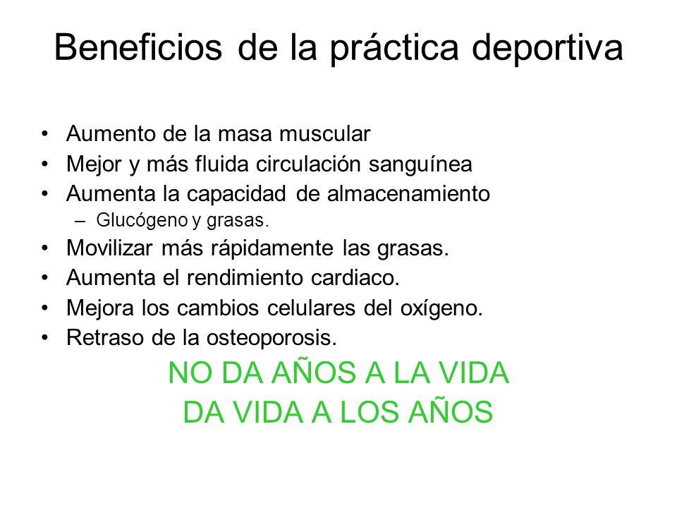 Beneficios de la práctica deportiva Aumento de la masa muscular Mejor y más fluida circulación sanguínea Aumenta la capacidad de almacenamiento –Glucó