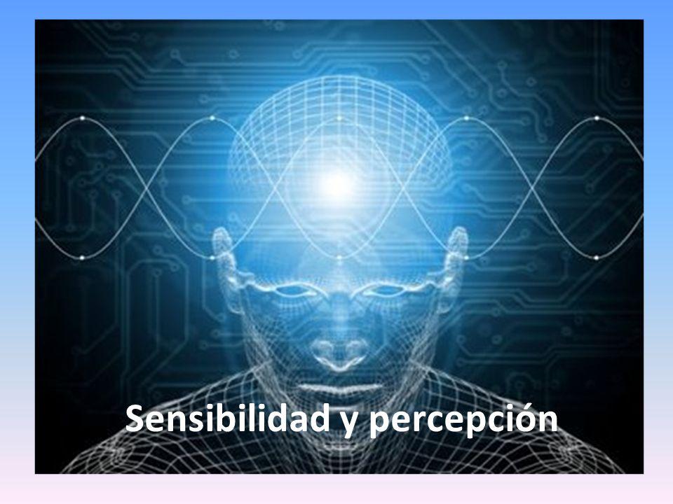 Características fundamentales de la percepción: Es un proceso constructivo que depende de las características del estímulo (que activa los órganos de los sentidos) y de la experiencia sociocultural y afectiva del sujeto perceptor.