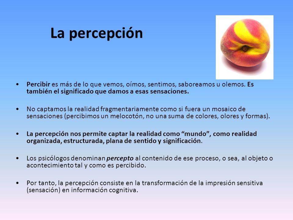 La percepción Percibir es más de lo que vemos, oímos, sentimos, saboreamos u olemos. Es también el significado que damos a esas sensaciones. No captam