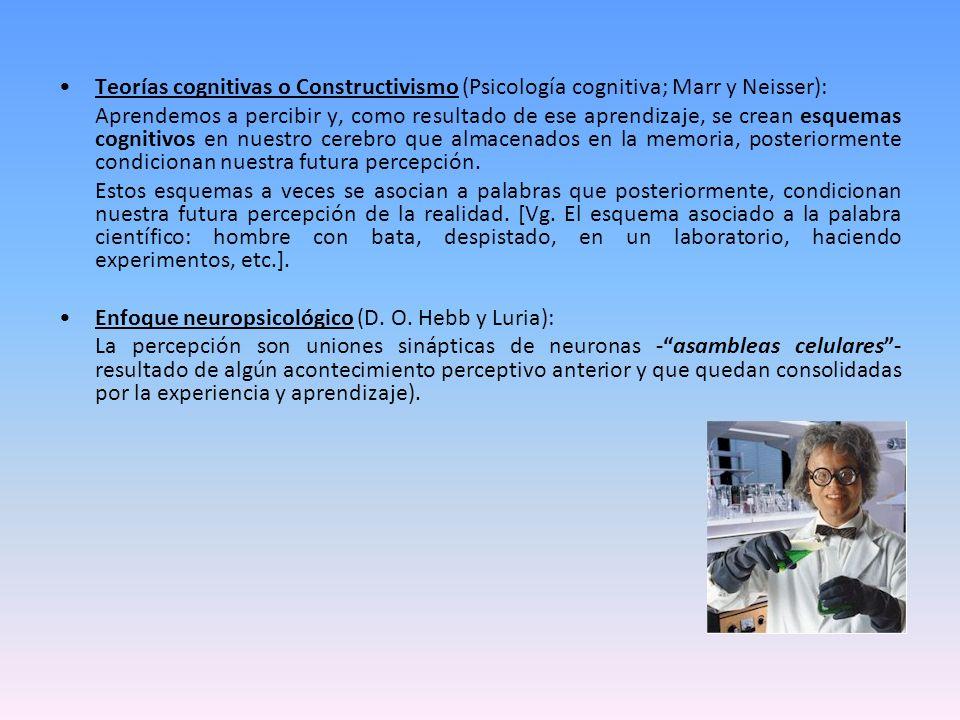 Teorías cognitivas o Constructivismo (Psicología cognitiva; Marr y Neisser): Aprendemos a percibir y, como resultado de ese aprendizaje, se crean esqu